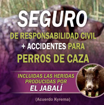Seguros de R.Civil y accidentes para perros